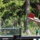 tischtennis_waldbad